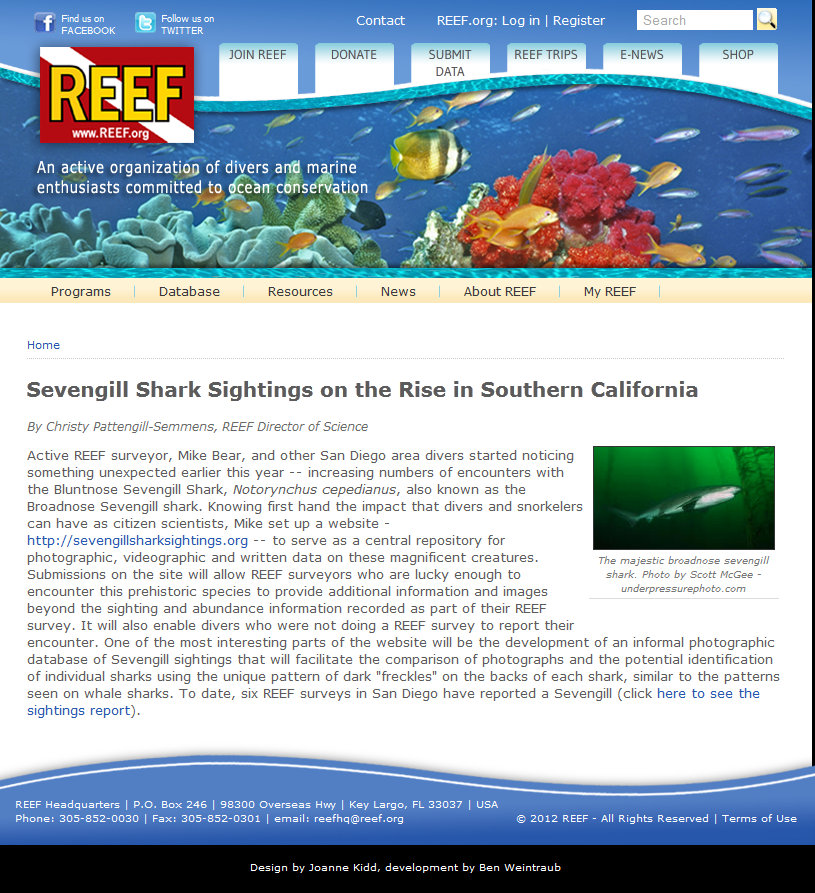 Sevengill shark photo in a Reef.or article on increased sightings.