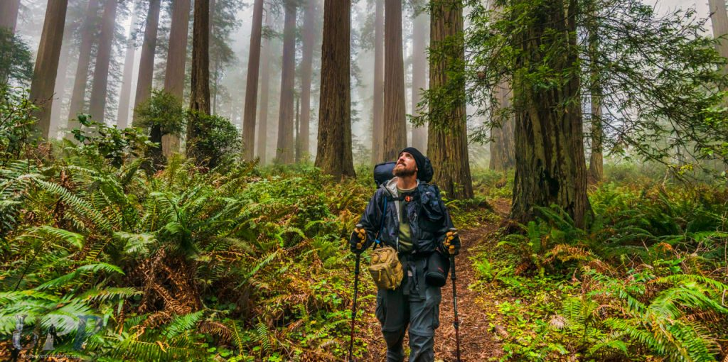 "<a href=""http://crtrgrl.com/"">CrtrGrl</a> captured this photo of me on our hike out of Redwood National Park. It's one of my favorite photos she took.. and not just cause I'm in it!"