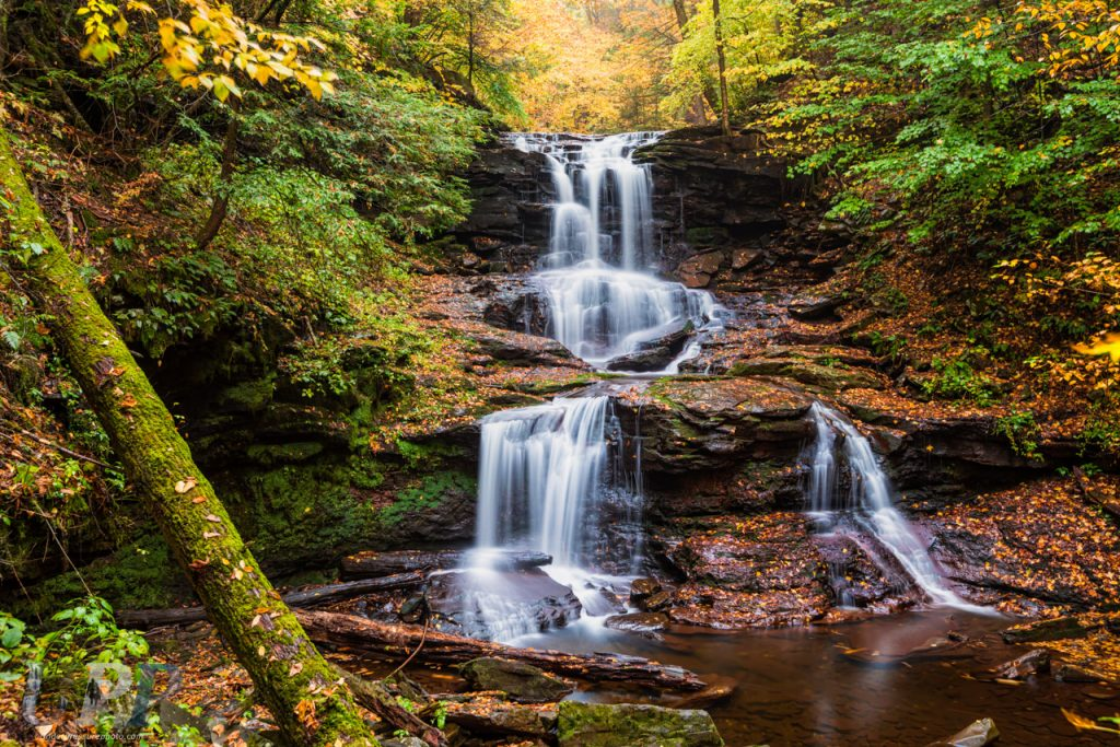 Long exposure of the Tuscarora Falls, Ricketts Glen, PA. I'm drawn to water. It's in my blood. When Carolita told me about Ricketts Glen and that there were over 20 waterfalls, I couldn't wait to go hiking and photograph there. Add fall colors and cloudy/rainy skies and I was in fantasy land.