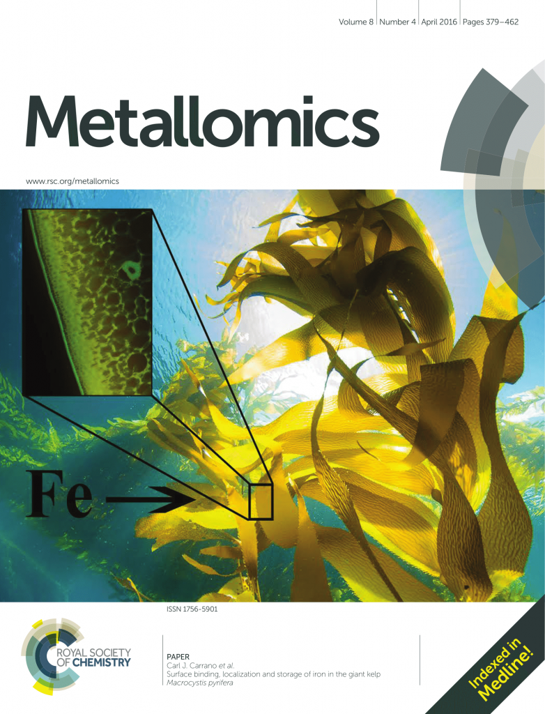 Kelp Sunburst inside cover of the science journal Metallomics