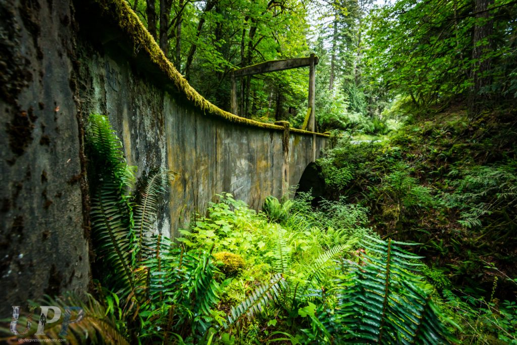 Cascade Creek crosses under the entrance bridge at the southern end of Moran State Park, WA. It was beautiful exploring Moran State Park.