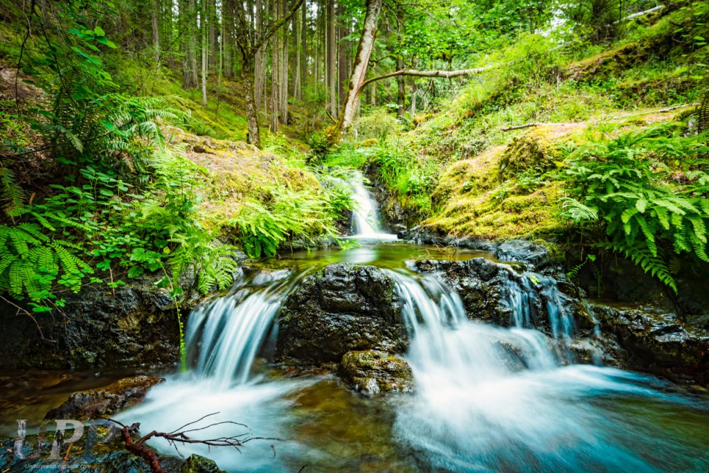 A triumvirate of small cascades in Cascade Creek, that we found while exploring Moran State Park WA.