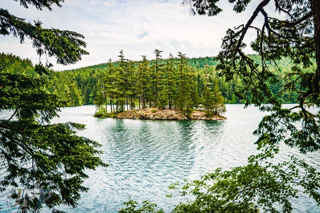 Trees sit on a small island in Mountain Lake, WA.