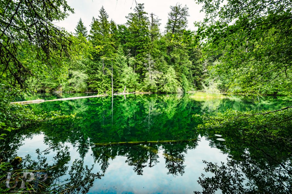 The forest surrounding Mountain Lake is reflected on the glassy surface.