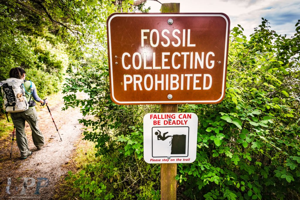 Ok, we'll try not to fall. No fossil collecting sign near Fox Cove on Sucia Island.