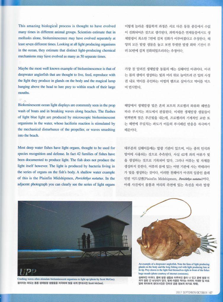 "Bio-luminescent Surf image in South Korea's ""Scuba Diver"" print magazine Volume 181 (September/October 2017)"