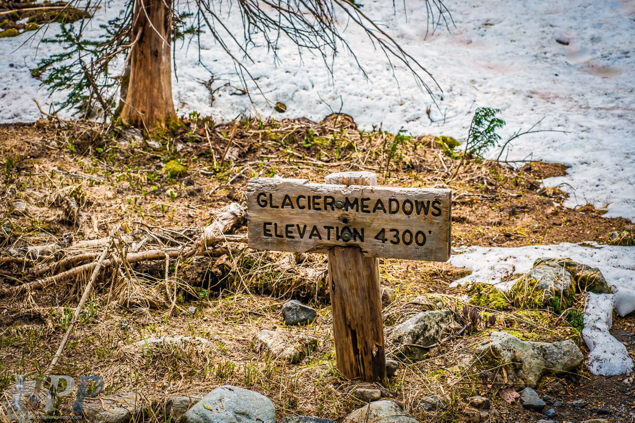 Glacier Meadows