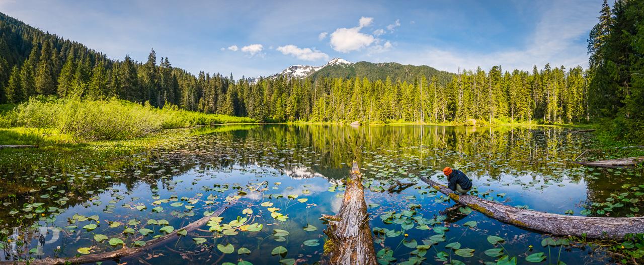 Elk Lake Morning
