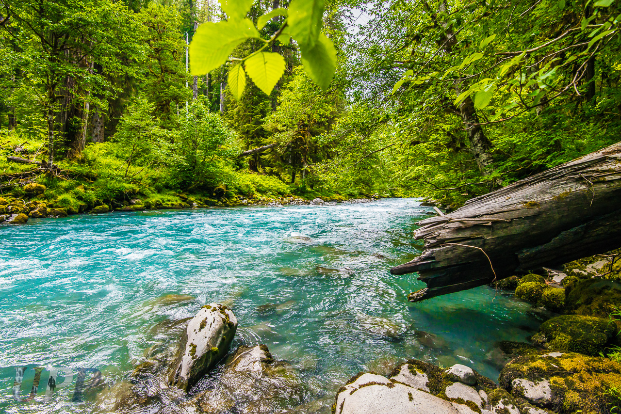 Glacier Blue River in Green
