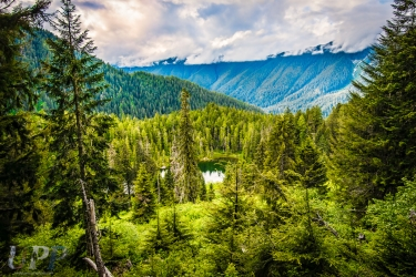 Elk Lake and the Hoh River Valley