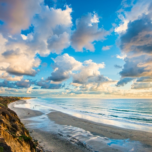 Beach Bluffs