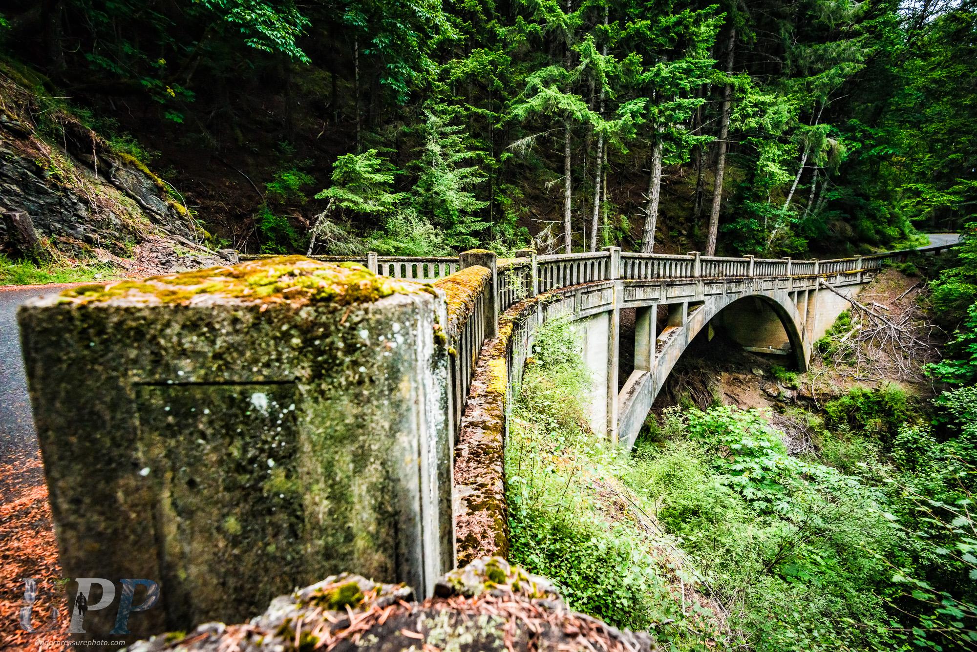 Rustic Bridge Path