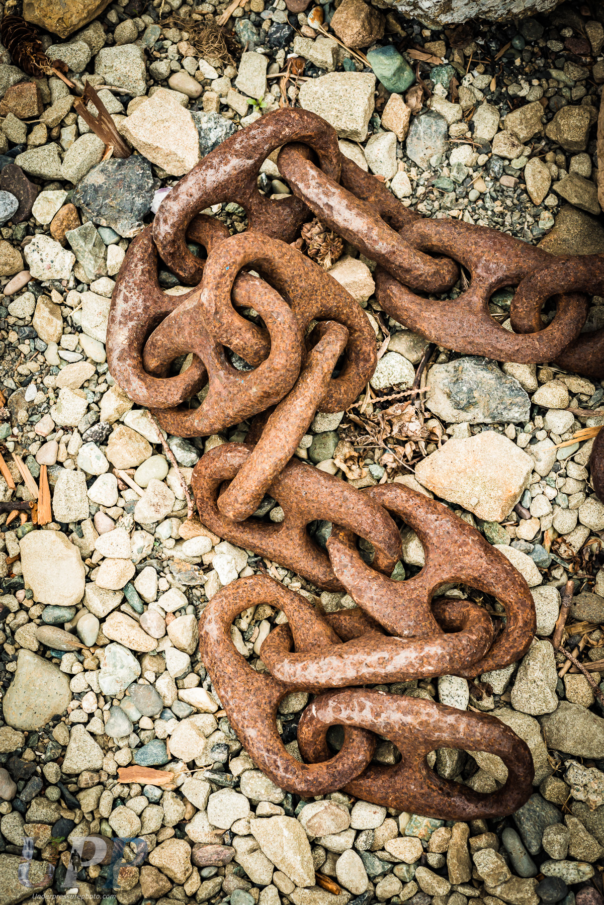 Rusting chains in Fossil Bay